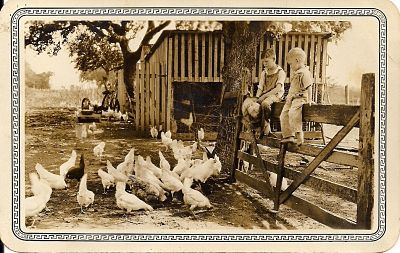 Adam, Chester and Jimmie with chickens_opt